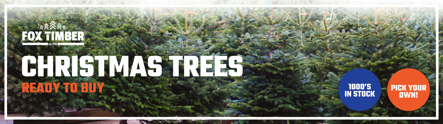 Buy Christmas Trees Lancashire
