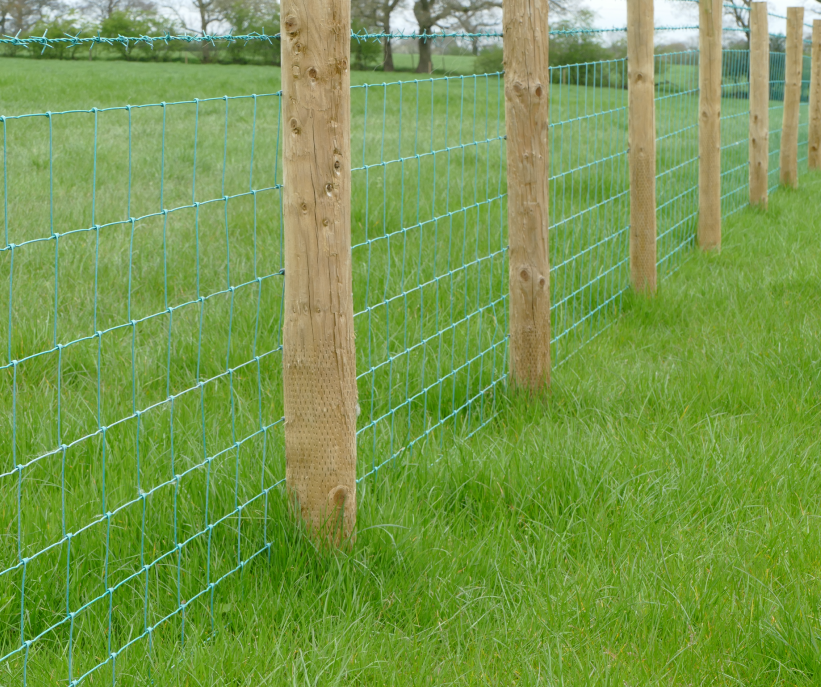 Incised Straining Posts Buy Online